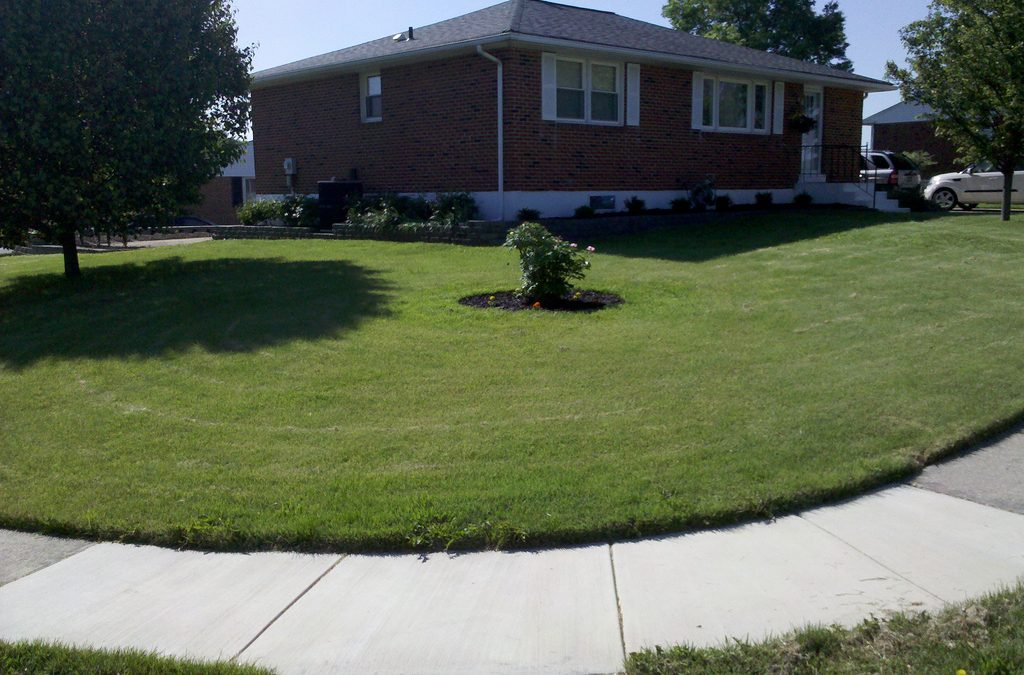 5 Weekend Landscaping Tasks to Improve Your Curb Appeal