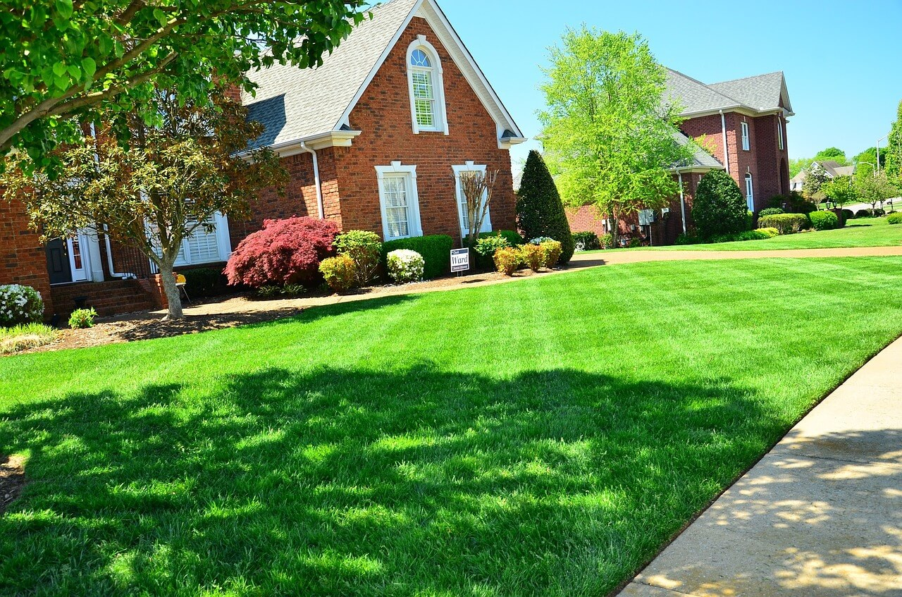 How Can You Benefit from Professional Lawn Care Services - Sunset  Landscaping